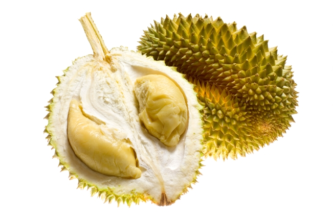 Tropical fruit outcast, the durian - sau rieng - vietnam