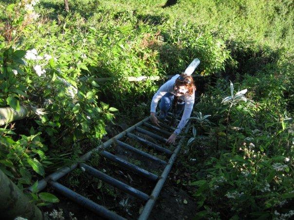 woman climbing ladder - vietnam